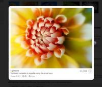 lightview.jpg